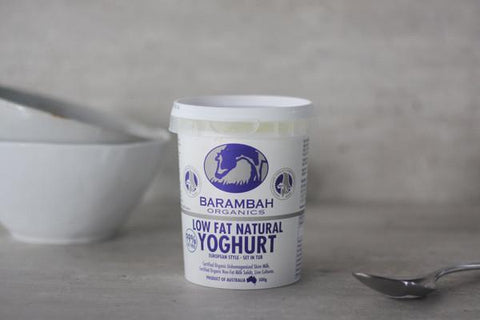 Organic Bush Honey Yoghurt 500g*