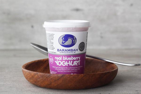 Organic Real Blueberry Yoghurt 100g*