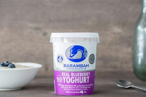 Organic Real Blueberry Yoghurt 200g*