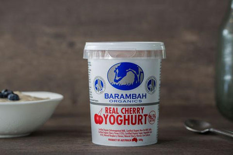 Organic Real Blueberry Yoghurt 500g*