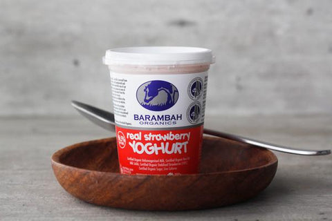 Organic Bush Honey Yoghurt 100g*
