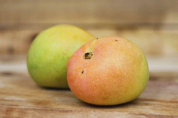 Little Farms Produce Kensington Pride Mango (each) Produce > Fruit