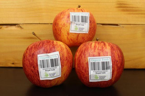 Organic Packham Pear 2 Pcs