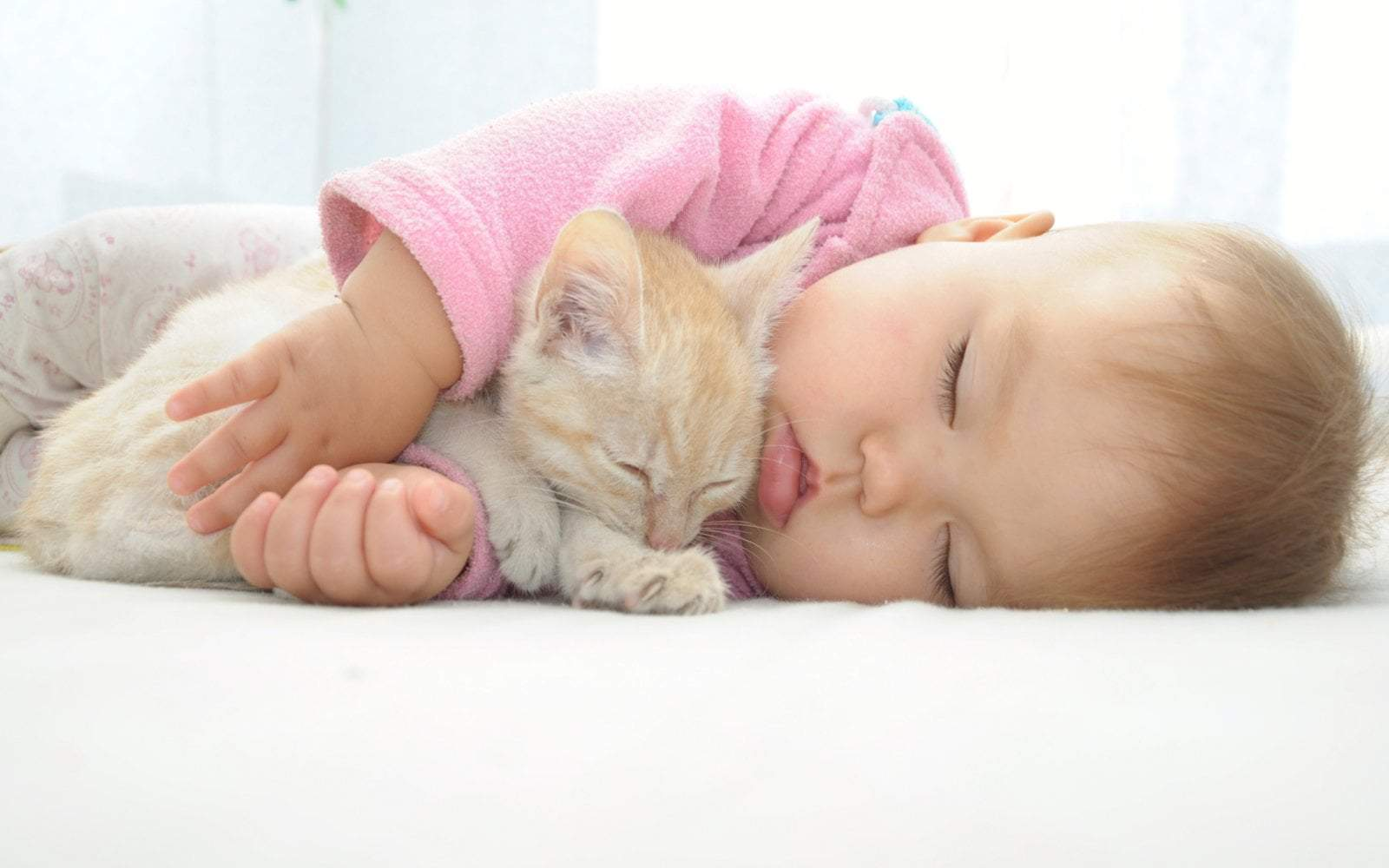 Baby Catnapping