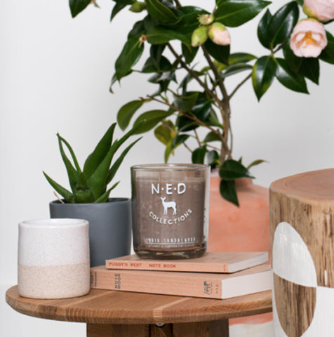 NED Coconut Vanilla Soy Candle