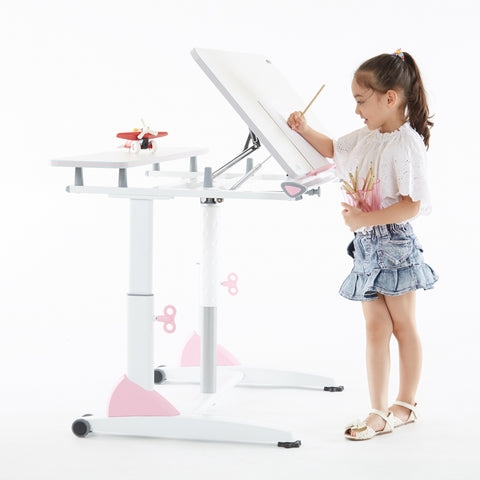 Ergonomic Desk with adjustable table top