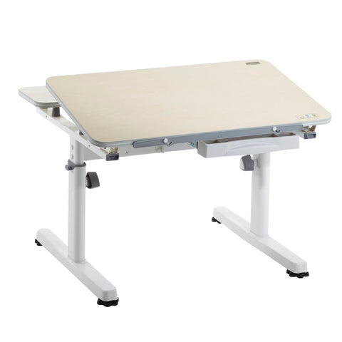Small Ergonomic Manual Adjustable Desk