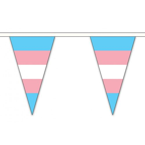 Transgender Pride Flag Cloth Bunting Small (5m x 12 flags)