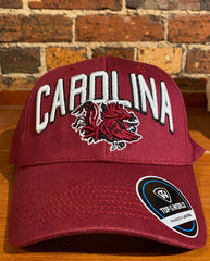 South Carolina Gamecocks Top Of World Hat