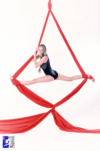 Nathalie wante aerial silks Les sittard heerlen strength training and core conditioning