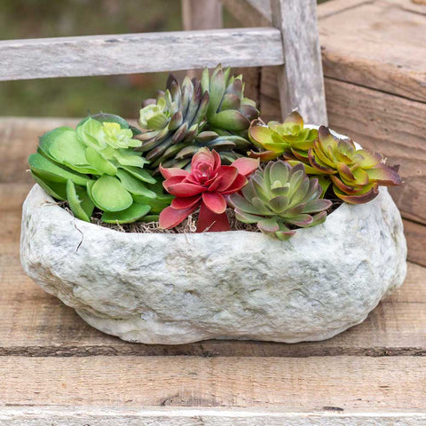 Natural Cement Stone Planter