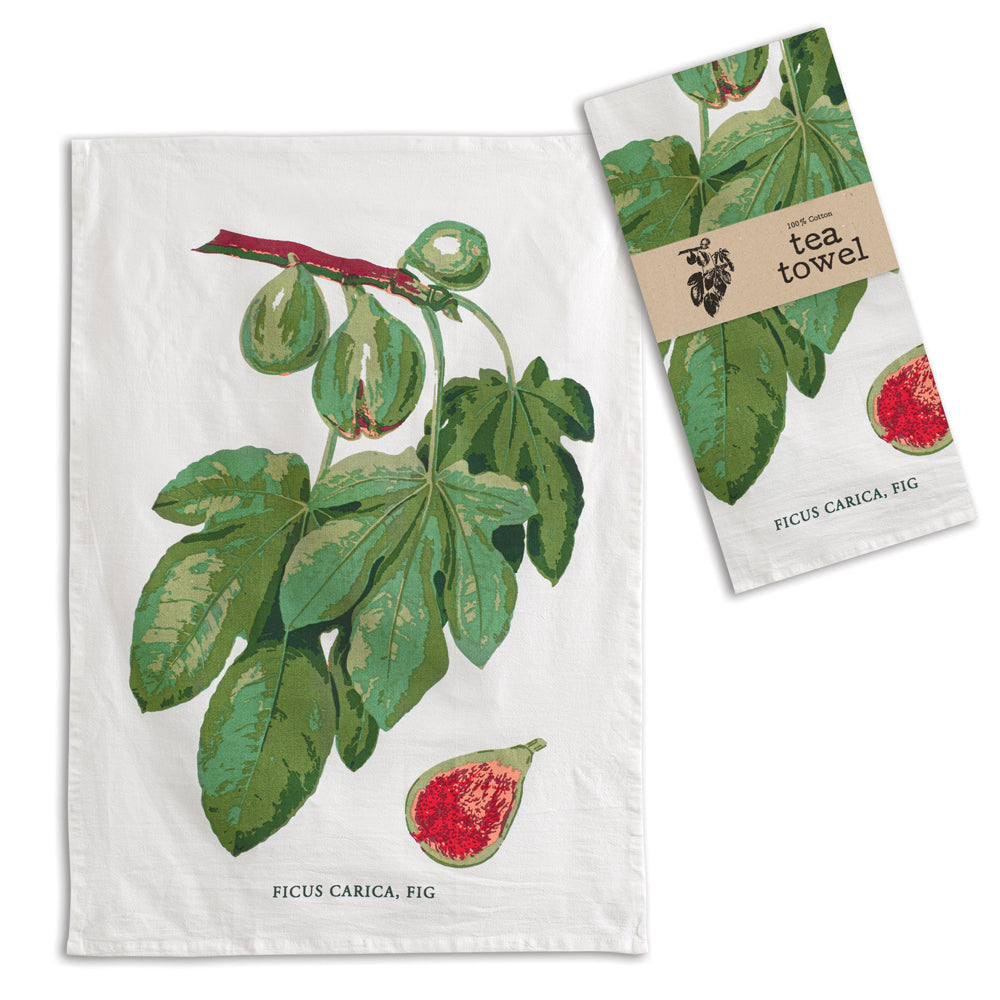 Fig Fruit Cotton Tea Towels, Set of 4,dish towel,Adley & Company Inc.