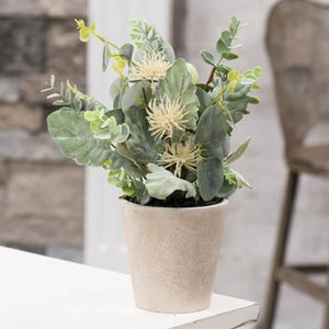 Aberdeen Sea Holly Faux Potted Plant, Set of 2,artificial plant,Adley & Company Inc.