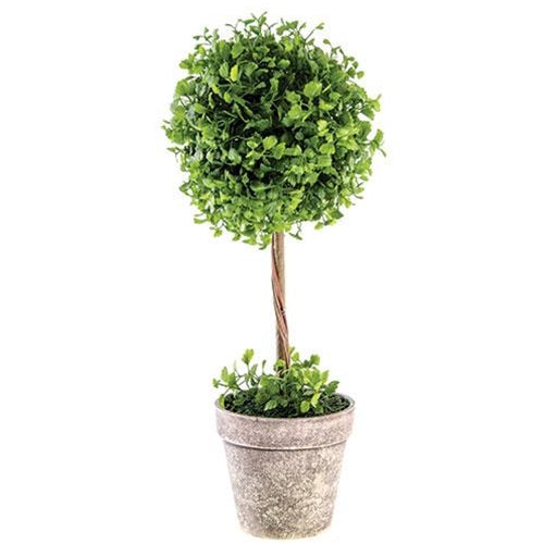 "18"" Maidenhair Fern Topiary, Set of 2,topiary,Adley & Company Inc."