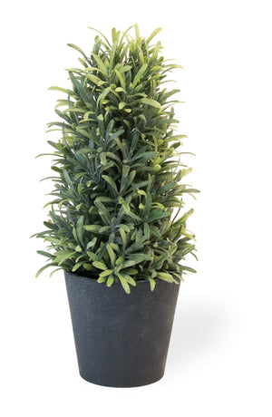Faux Rosemary Bush in Pot, Set of 2
