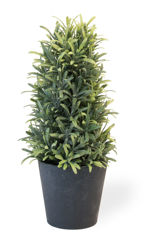 Faux Rosemary Bush in Pot, Set of 2,topiary,Adley & Company Inc.