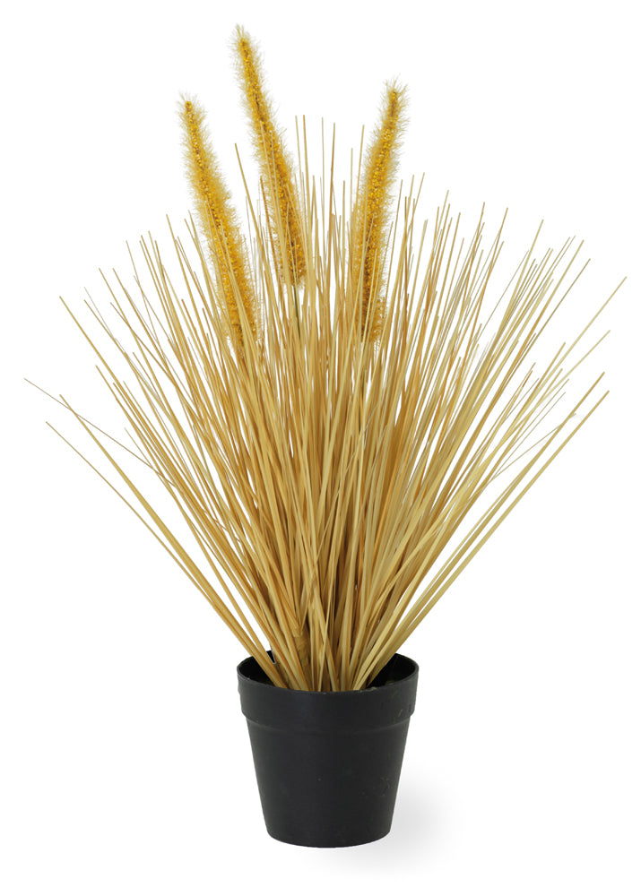 Artificial Ornamental Dogtail Grass, Set of 4
