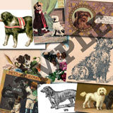 20 Pack Vintage Dogs Images Download