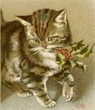 Free Vintage Christmas Kitten Image Photo Jewelry