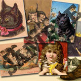 20 Pack Vintage Cats Images Download