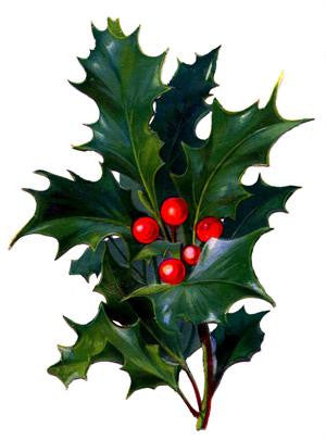 Free Vintage Christmas Holly Image To Download - Photo Jewelry Making