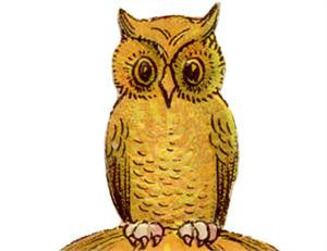 Free Vintage Owl Image To Download
