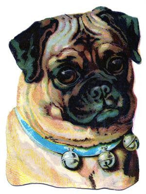 Free Vintage Pug Dog Image - Photo Jewelry Making