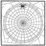 Free Vintage Spider Web Graphic