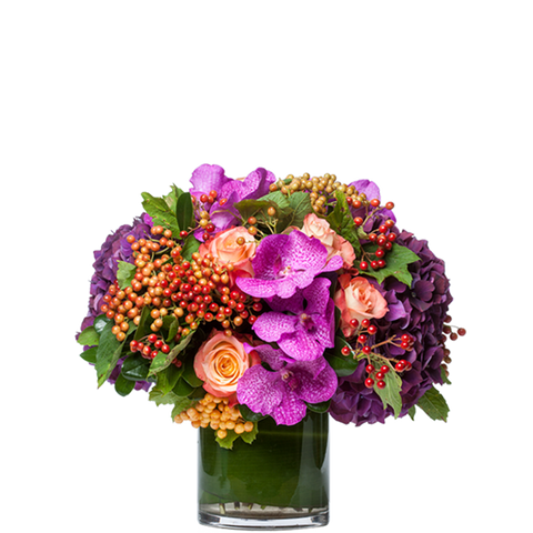 Bloom Bold Gift Arrangement