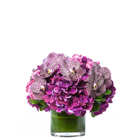 Bloom Royal Gift Arrangement