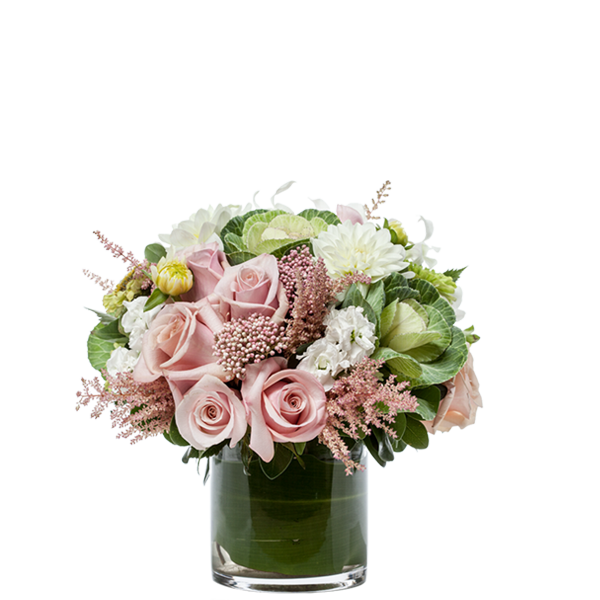 Bloom Harmony Gift Arrangement