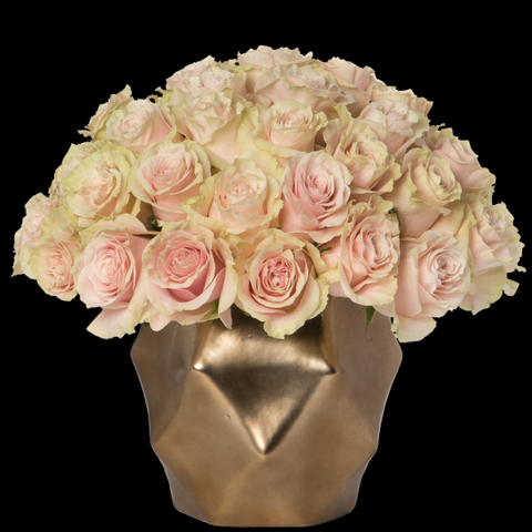 Four Dozen Rose Arrangement