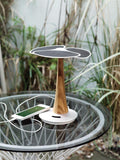 Ginkgo Solar Tree 4.000mAh, White