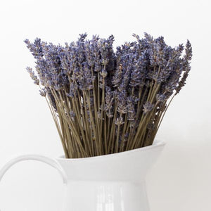 lavender by the bay dried french