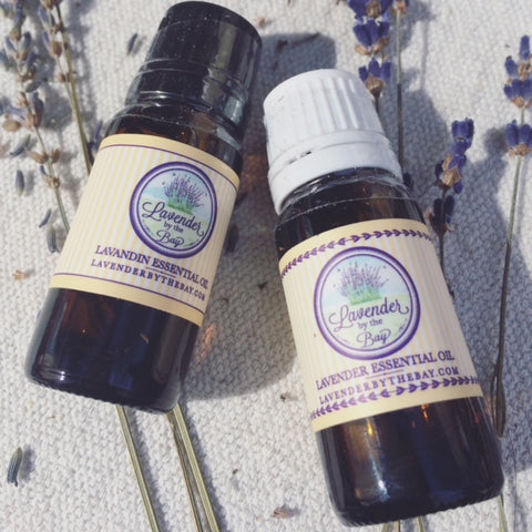 english and french essential oil
