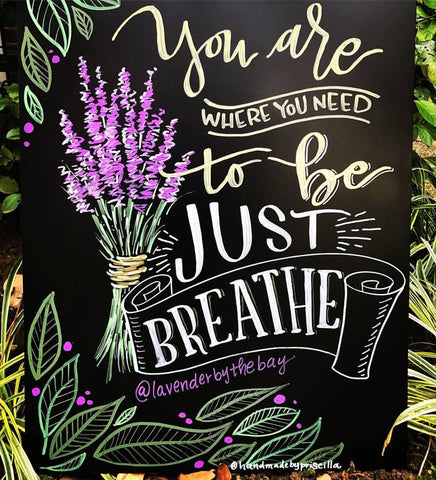 just breathe lavender
