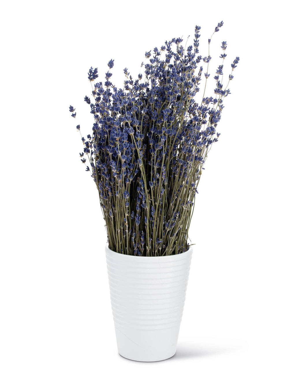 Dried English lavender