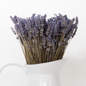 Dried French Lavender Bunches - Set of 2