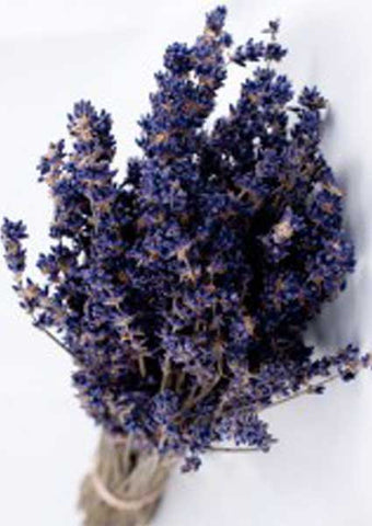 Dried English Lavender Bunches