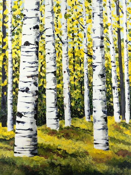 Aspen Trees in Summer Painting by Jill Saur