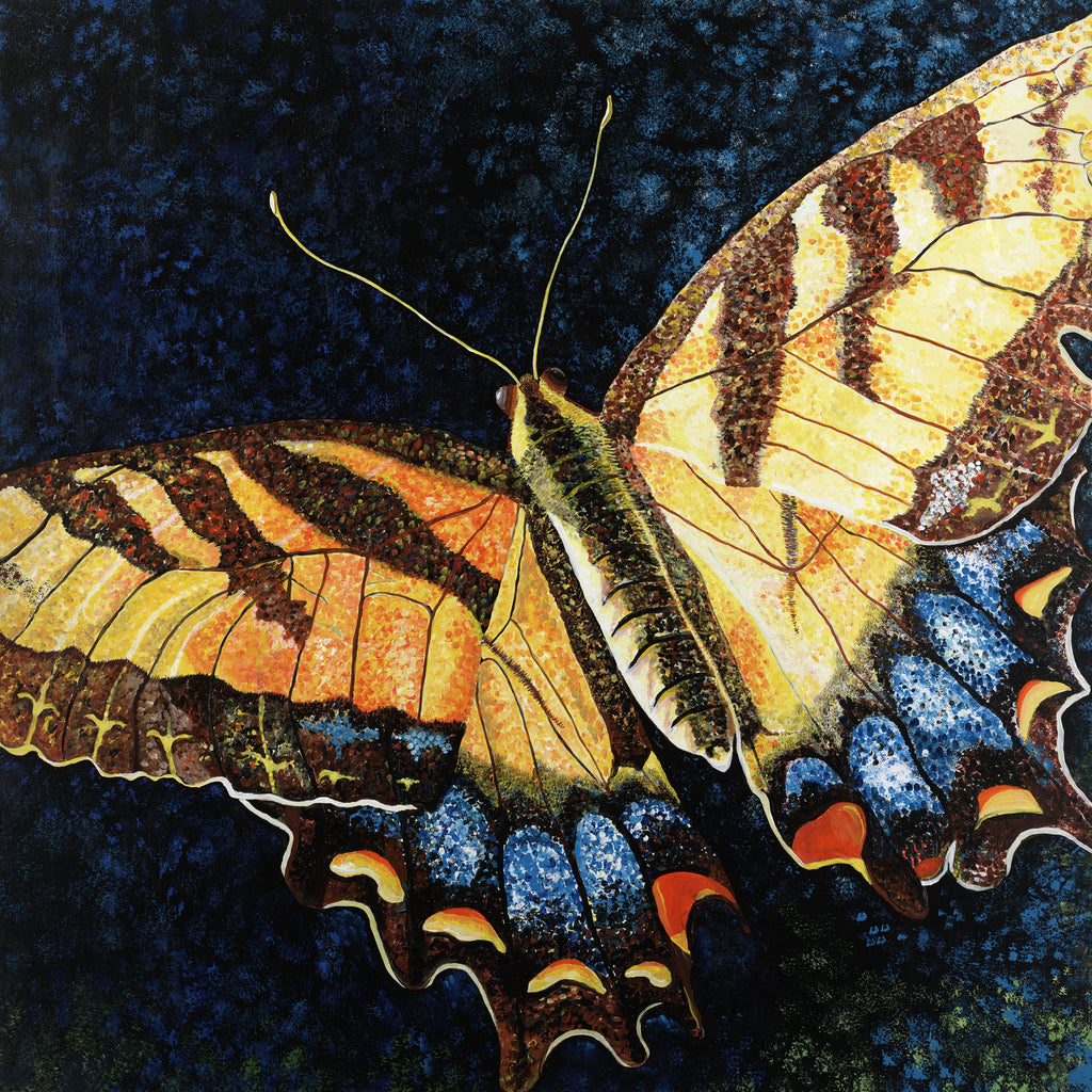 Butterfly Painting by Jill Saur