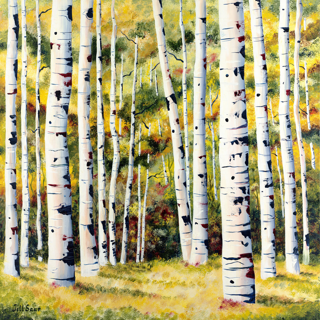 Aspens In Summer Painting by Jill Saur