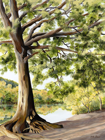 Oak Tree Painting by Jill Saur