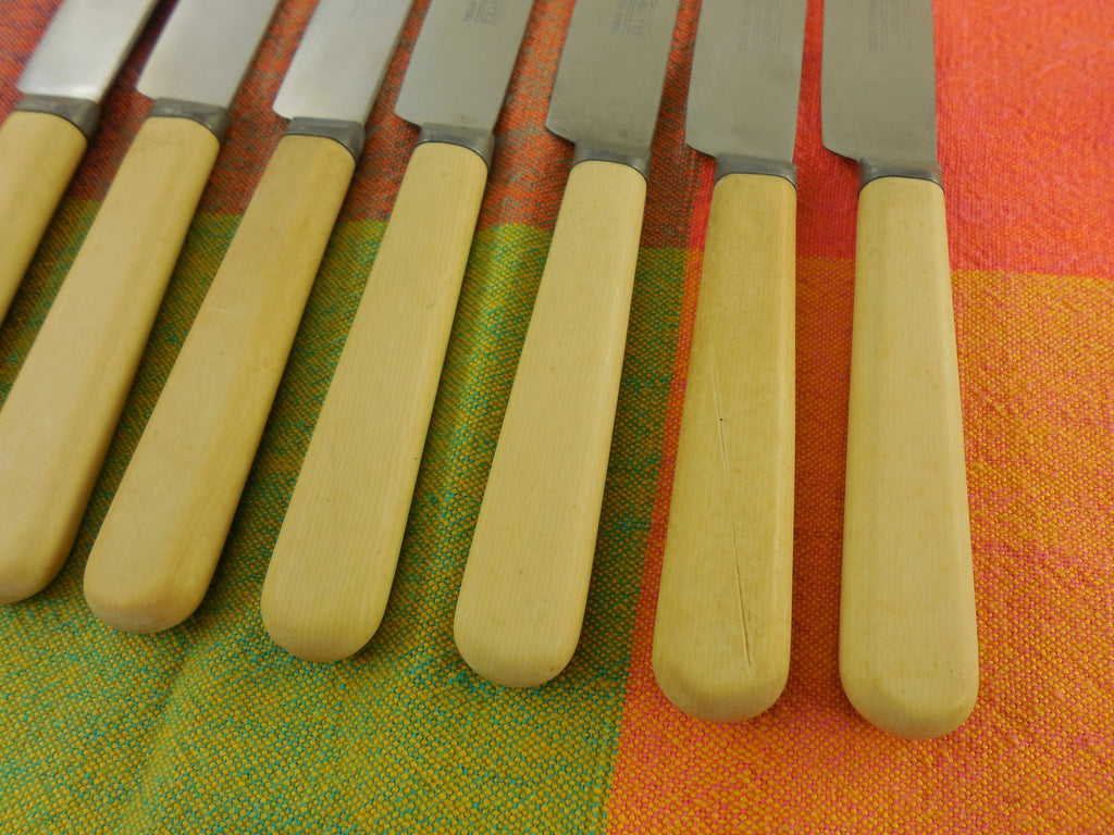Celluloid Handle Dinner Knives 7 Set - Sta-Brite - Stainless & French Ivory handles