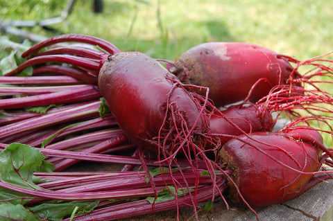 Study: Beetroot Juice Supplementation Improves Performance
