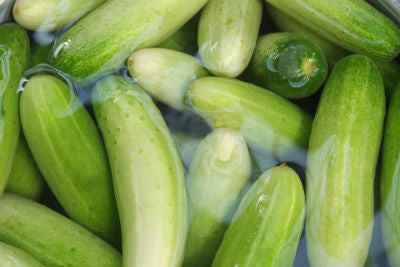 Just Some of the Benefits of Cucumber Juice