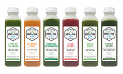 The Fountain of Juice 1-Day Going Green Raw Juice Cleanse | All Natural, Cold-Pressed, No-HPP, Vegan, Gluten-Free