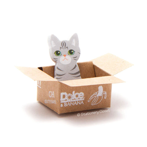 Cat in a box sticky markers - American shorthair