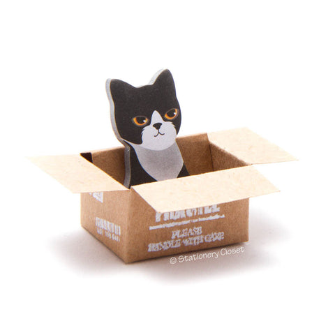 Cat in a box sticky markers - Korean shorthair