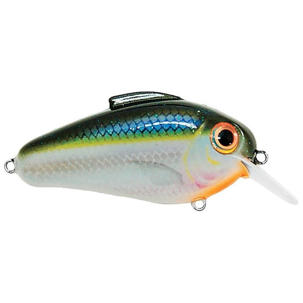 Bill Lewis Echo 1.75 Squarebill Crankbait - Southern Reel Outfitters